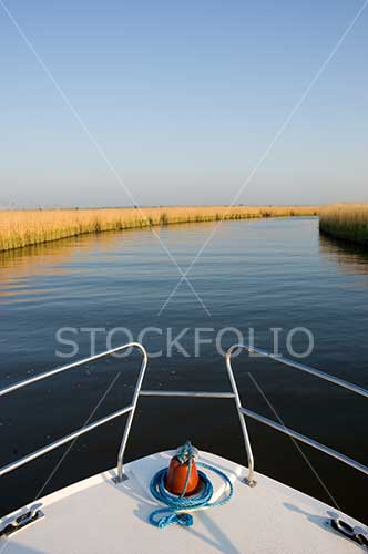 Bow of a boat on a reed lined river
